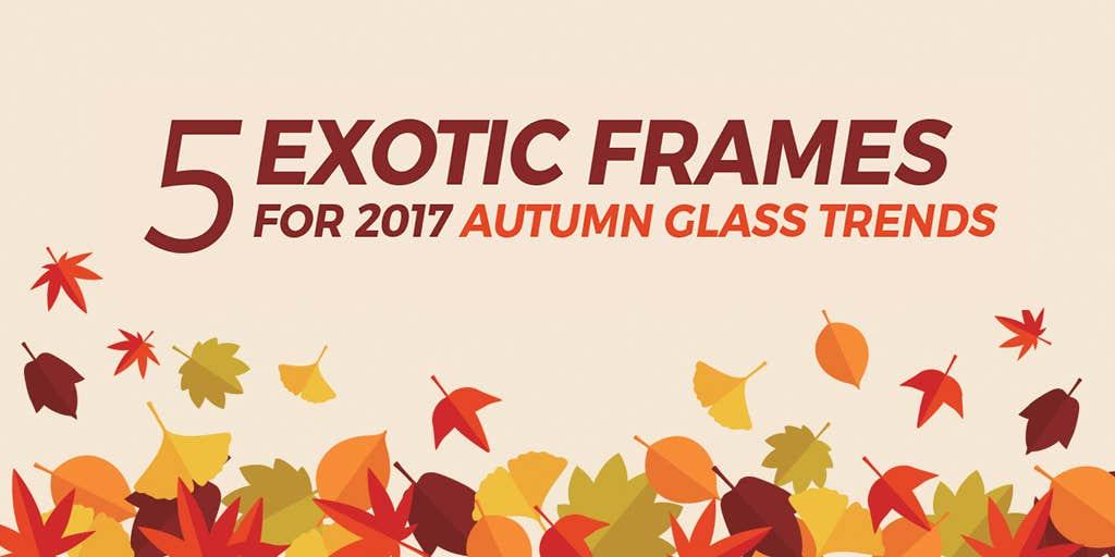 5 Exotic Frames for 2017