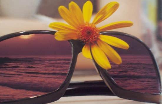 Summer Eyeglasses